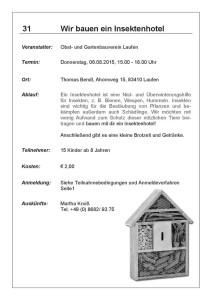 Ferienprogramm 2015 Oberndorf und Laufen (34)